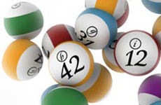 Check Lotto Results